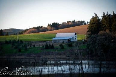 Barn_Country