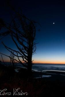 Sunset Tierra Del Mar_Moon