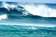 Hawaii Website_2015-18