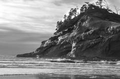 Pacific City Landscape 2016-6